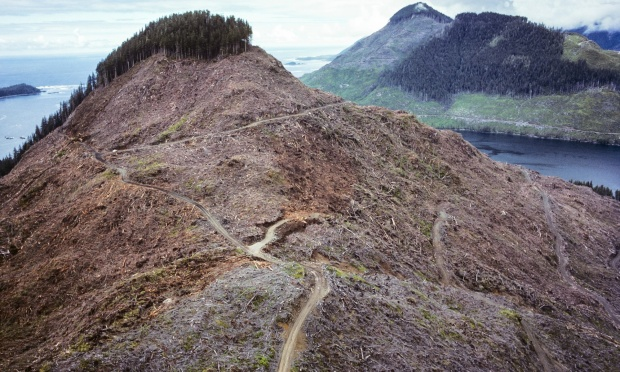 Sometimes called the Brazil of the North, Canada has not been kind to its native forests as seen by clear-cut logging on Vancouver Island | Deforestación en Vancouver