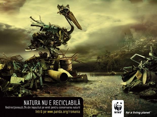 Campaña ambiental cop20 12