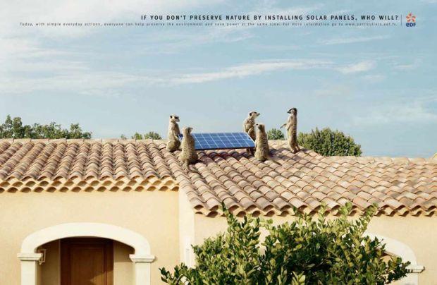 Campaña ambiental cop20 13