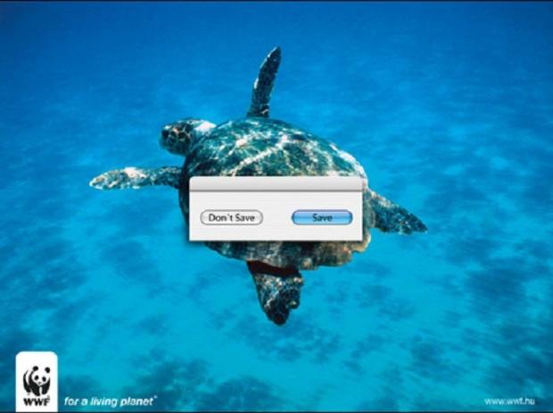 Campaña ambiental cop20 6