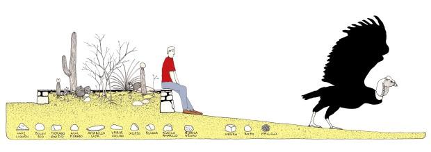 8-corte-jardinera